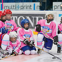 Girls' Hockey Day
