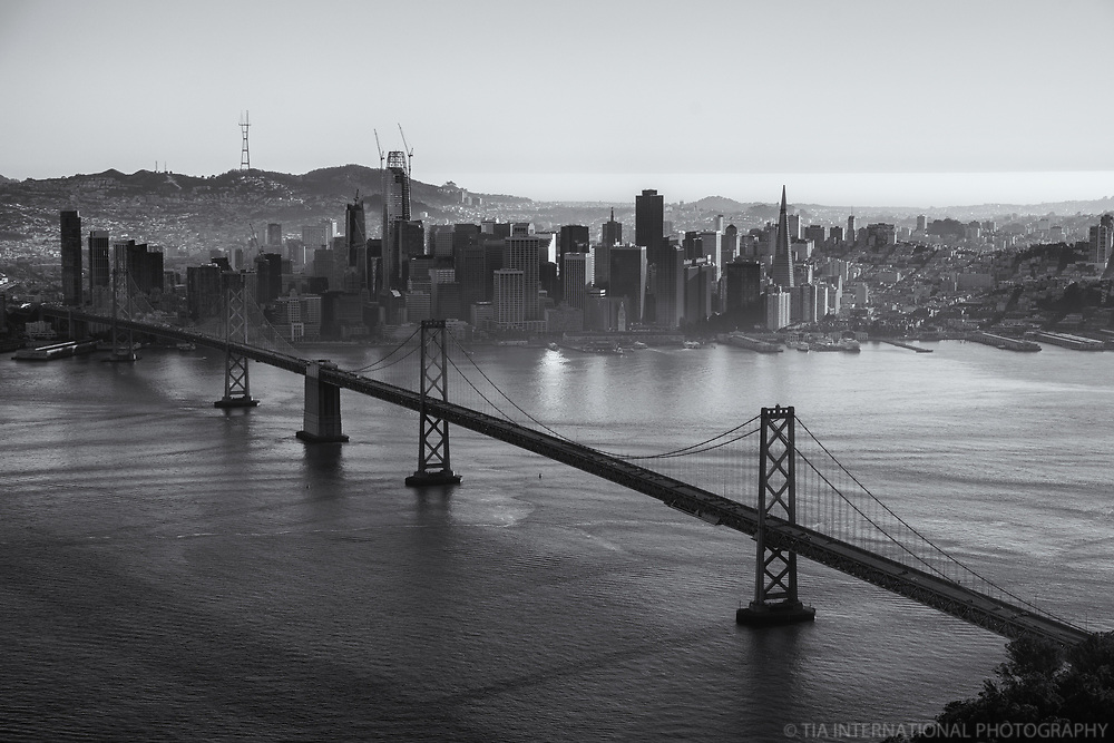 Classic SF Skyline with Bay Bridge II (monochrome)