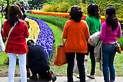 Colour-coordinated women at the Keukenhof tulip and flower show in Lisse, Holland - Netherlands Editorial Use only.