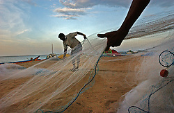Fishermen bring in their nets on the beach across the bay from where all nearly of their homes and boats were destroyed  after the deadly tsunami hit last December 26 in the village of Muzuku Thurai near Cuddalore in Tamil Nadu, India August 26, 2005. Families are slowly recovering eight months after the deadly tsunami killed thousands but the process is slow and the situation still grim for many of the worlds poorest who were most affected by the deadly wave.  (Ami Vitale)