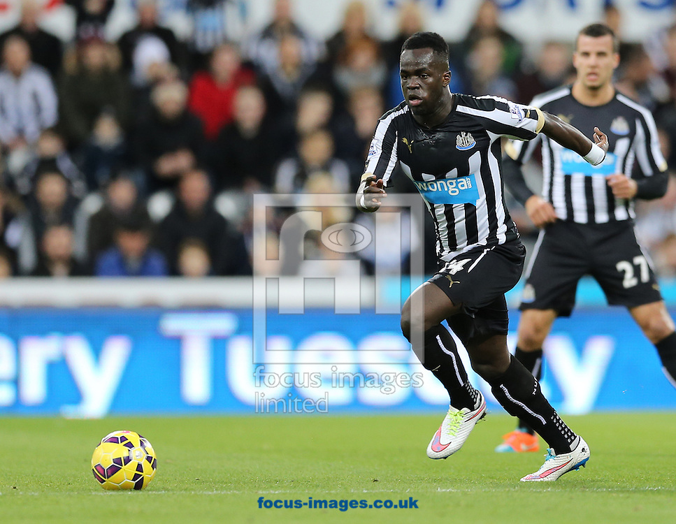 Cheik Ismael Tiote of Newcastle United during the Barclays Premier League match at St. James's Park, Newcastle<br /> Picture by Simon Moore/Focus Images Ltd 07807 671782<br /> 01/01/2015
