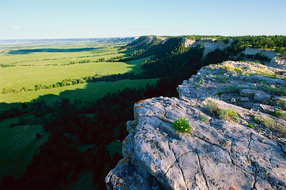 The Pine Ridge Escarpment towers over the high plains of Oglala National Grassland.