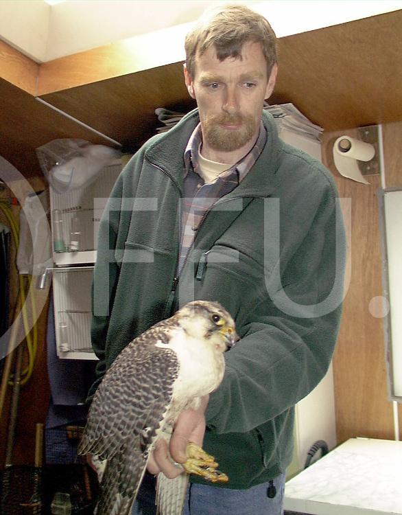 Fotografie Uijlenbroek©1999/Frank Uijlenbroek.990406 nieuwleusen ned.niet europese jachtvogel in Oehoe beland.op foto Kreeft met de vogel