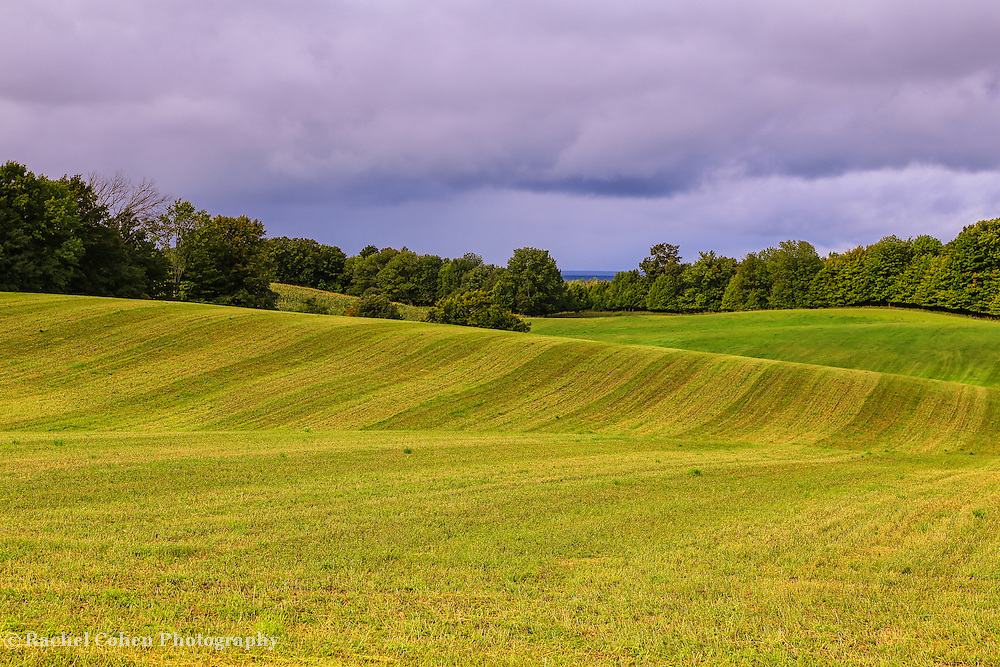 &quot;Farms of Charlevoix&quot;<br />