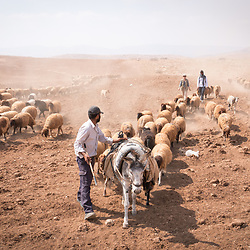 Jordan Valley, Palestine - October 2018