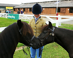 © Licensed to London News Pictures.16/07/15<br /> Harrogate, UK. <br /> <br /> A young girl waits with her Shetland ponies before entering the show arena for her round on the final day of the Great Yorkshire Show.  <br /> <br /> England's premier agricultural show has seen three days of showcasing the best in British farming and celebrating the countryside.<br /> <br /> The event which attracts over 130,000 visitors each year displays the cream of the country's livestock and offers numerous displays and events giving the chance for visitors to see many different countryside activities.<br /> <br /> Photo credit : Ian Forsyth/LNP