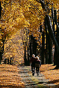 NJ, Morris County, couple walking down lane in Autumn