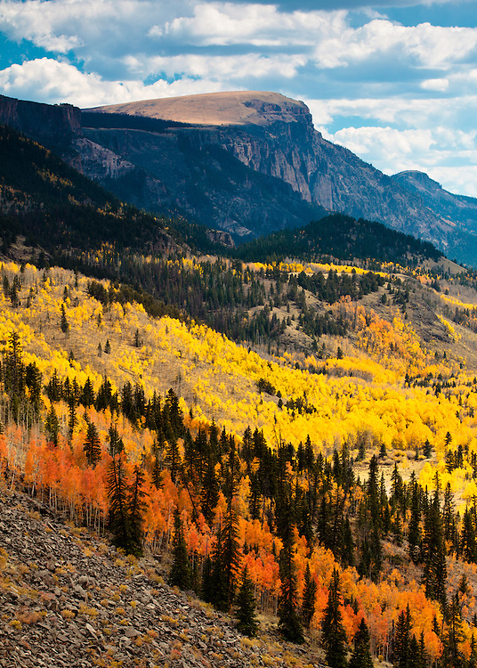 Rio Grande National Forest near Creede, Colorado.