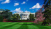 The White House and south lawn, Washington, DC USA