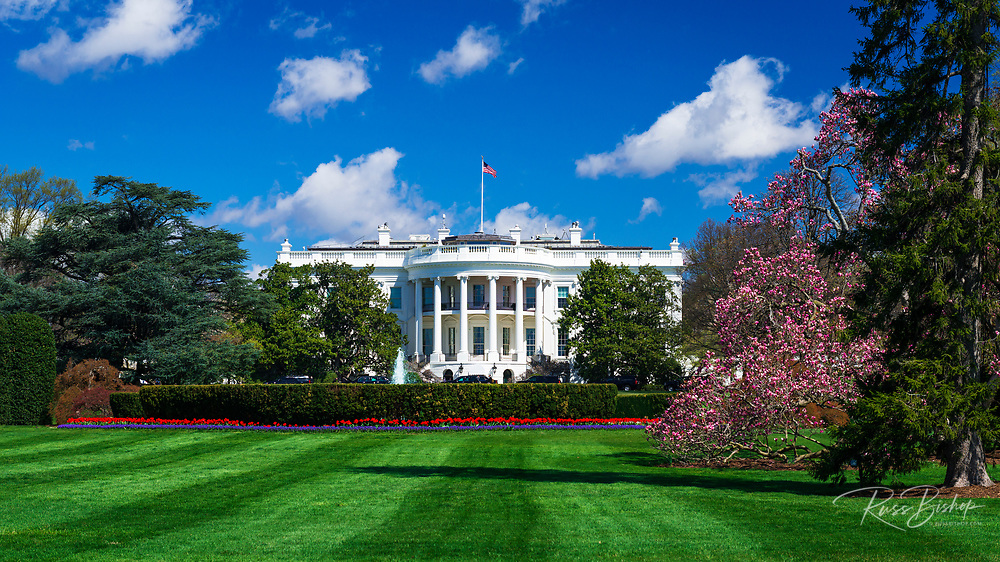 The White House and south lawn, Washington, DC USA