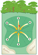 Golf technique of dividing the green into pie pieces to position your golf ball based on the design and geography of the green.