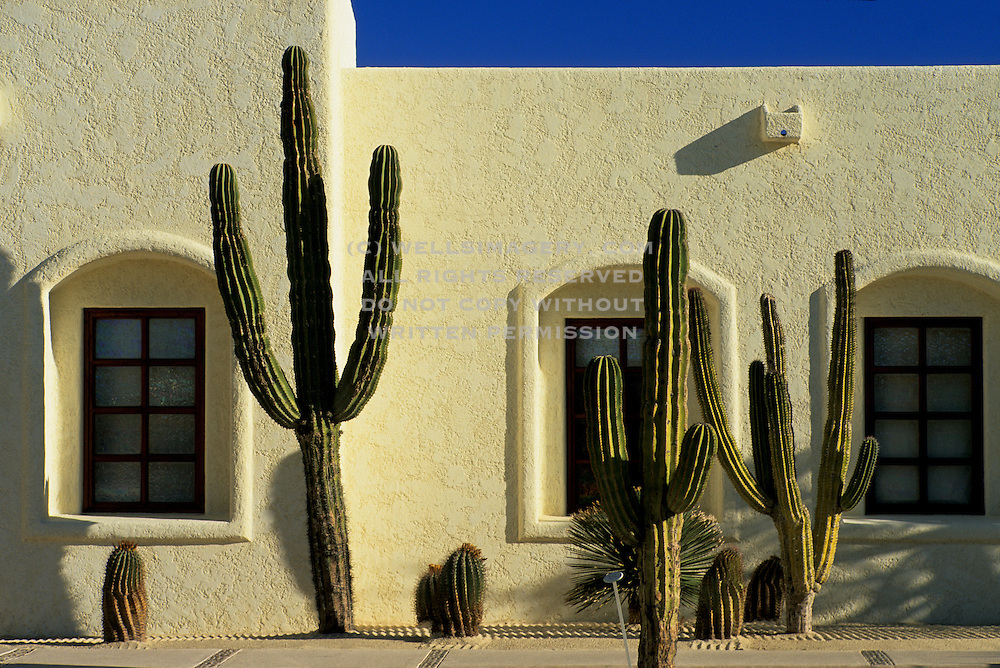 Image of a wall detail at Las Ventanas al Paraiso Resort in Cabo San Lucas, Baja California Sur, Mexico