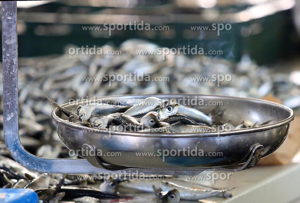 09.10.2015, Sibenik, CRO, Fischmarkt in Sibenik, im Bild das reichhaltige Angebot der verschiedenen Arten von Fisch auf dem Fischmarkt der Stadt // the rich offer of various types of fish on the city's fish market Sibenik in, Croatia on 2015/10/09. EXPA Pictures &copy; 2015, PhotoCredit: EXPA/ Pixsell/ Dusko Jaramaz<br /> <br /> *****ATTENTION - for AUT, SLO, SUI, SWE, ITA, FRA only*****