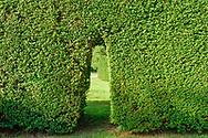 Hedges, Home, Wainscott, NY
