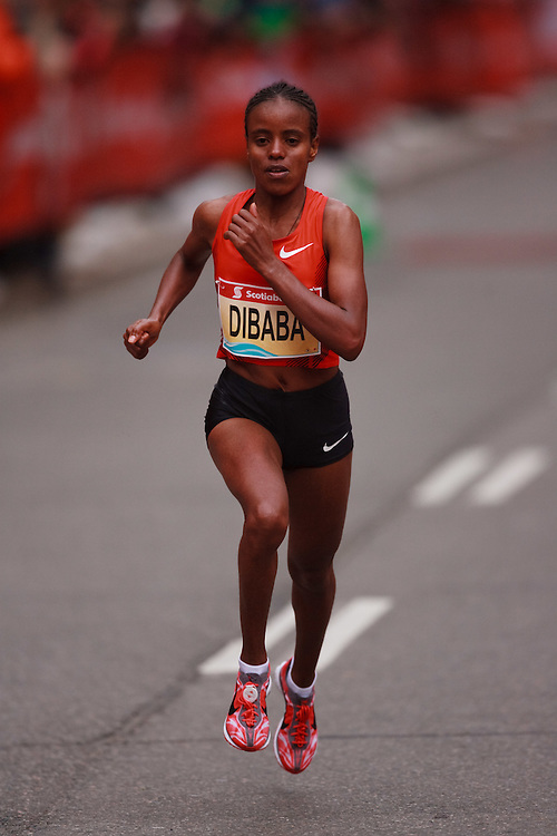 Toronto, Ontario ---11-10-16--- Mare Dibaba competes in the Scotiabank Toronto Waterfront Marathon, October 16, 2011.<br /> GEOFF ROBINS Mundo Sport Images