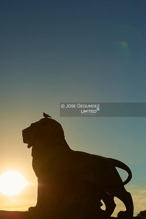 Parque del Retiro. Lion Sculture<br /> Narnia