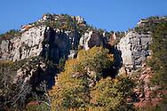 Beautiful foliage of the West Fork Trail in Oak Creek Canyon, AZ