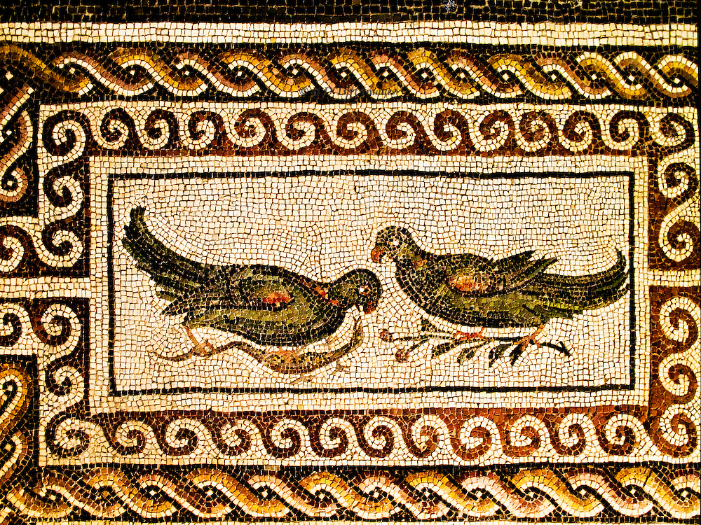 Museo Nazionale de Roma, Palazzo Massimo, mosaic panel, two pigeons, border of waves and rope