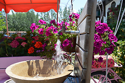 June 27, 2017 - Ankara, Turkey - Flowers are seen at Cheerful Village in Ankara, Turkey on June 27, 2017. Mostly families and children visit the village to enjoy the holiday on the last day of Eid al-Fitr. (Credit Image: © Altan Gocher/NurPhoto via ZUMA Press)