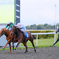 Kempton 9th October