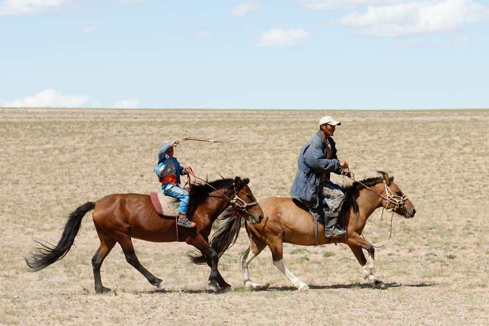 A man and boy on horseback herd camels in Govi-Altai Province, Mongolia.