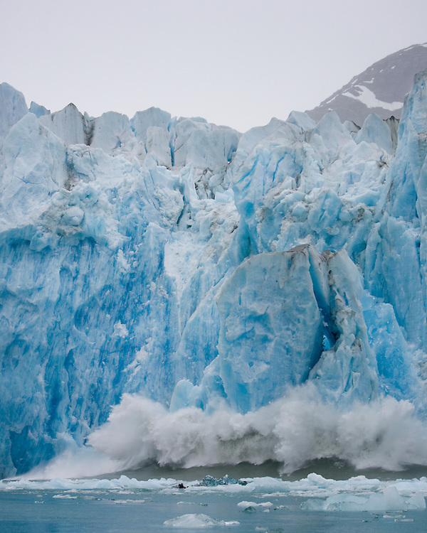 USA, Alaska, Tongass National Forest, Tracy Arm - Fords Terror Wilderness, Icebergs calving from face of Dawes Glacier along Endicott Arm
