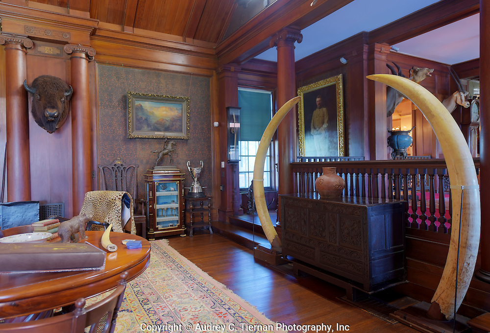 Oyster Bay, NY,  September 14, 2015: ---   Sagamore Hill was the home of the 26th president of the United States, Theodore Roosevelt. The home recently underwent a ten million dollar renovation. Many momentoes of TR&rsquo;s life fill<br /> the North Room. The oil painting (on the wall above) by Fedor Enke depicts TR as colonel of the famed Rough Riders regiment.  &copy; Audrey C. Tiernan