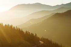 Hurricane Ridge Photos - Olympic National Park