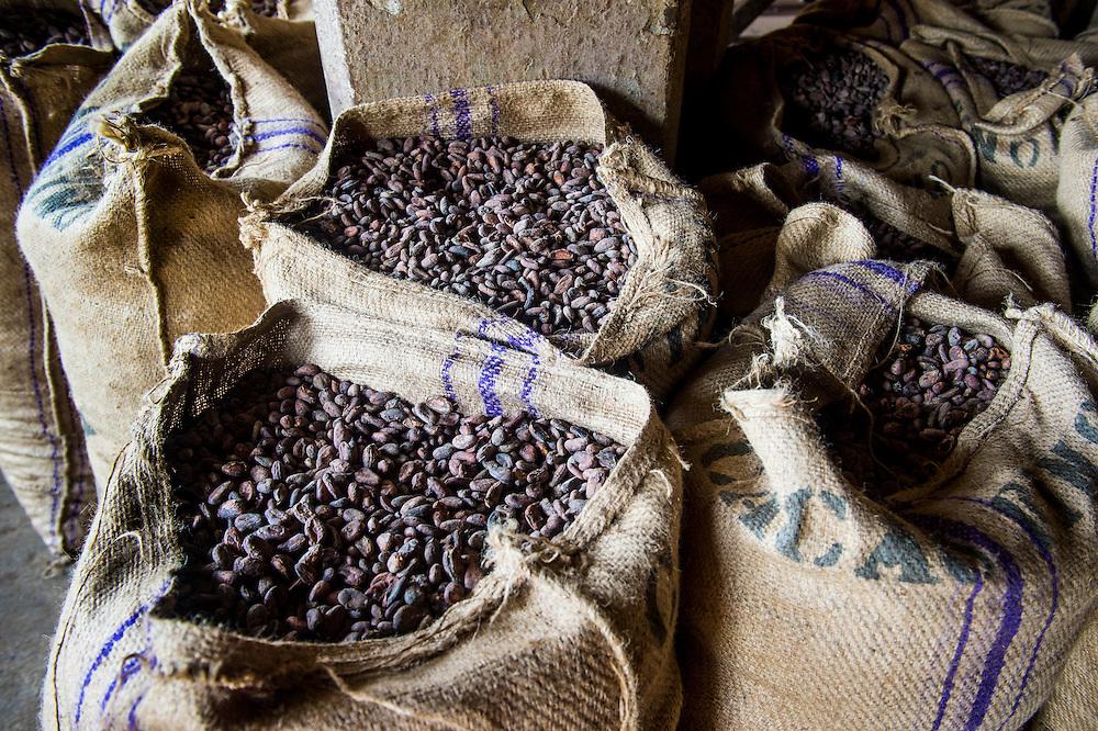 Bags full of cocoa beans, Cocoa plantation Roca Aguaize, East coast of Sao Tome, Sao Tome and Principe, Atlantic Ocean