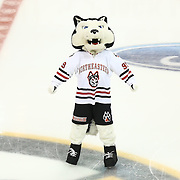 The Northeastern Huskie is seen during The Beanpot Championship Game at TD Garden on February 10, 2014 in Boston, Massachusetts. (Photo by Elan Kawesch)