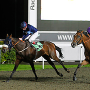Katie Gale and Jimmy Quinn winning the 8.10 race