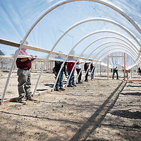 Dibe Yazhi Habitiin Community School seventh and eighth grade students hold a greenhouse plastic sheet over the frame of the hoop house as it's attached to the frame  Thursday, March 28 in Crownpoint.