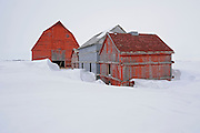 Old farmstead<br /> Rowatt<br /> Saskatchewan<br /> Canada