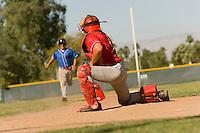 Runner Approaching Catcher