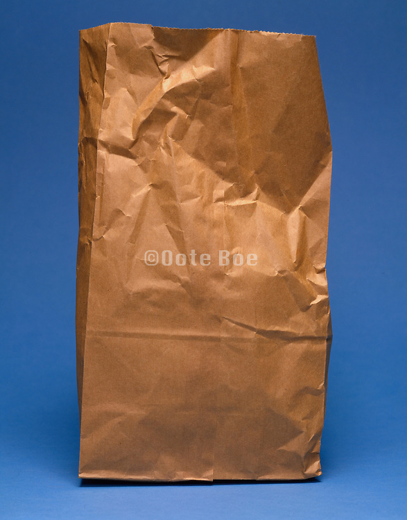 standing paper lunch bag