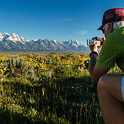 A Teton Teton Science Schools wildlife tour stops to explore the balsamroot flowers along the Antelope Flats Road in Grand Teton National Park, Wyoming.(Greg Peck)