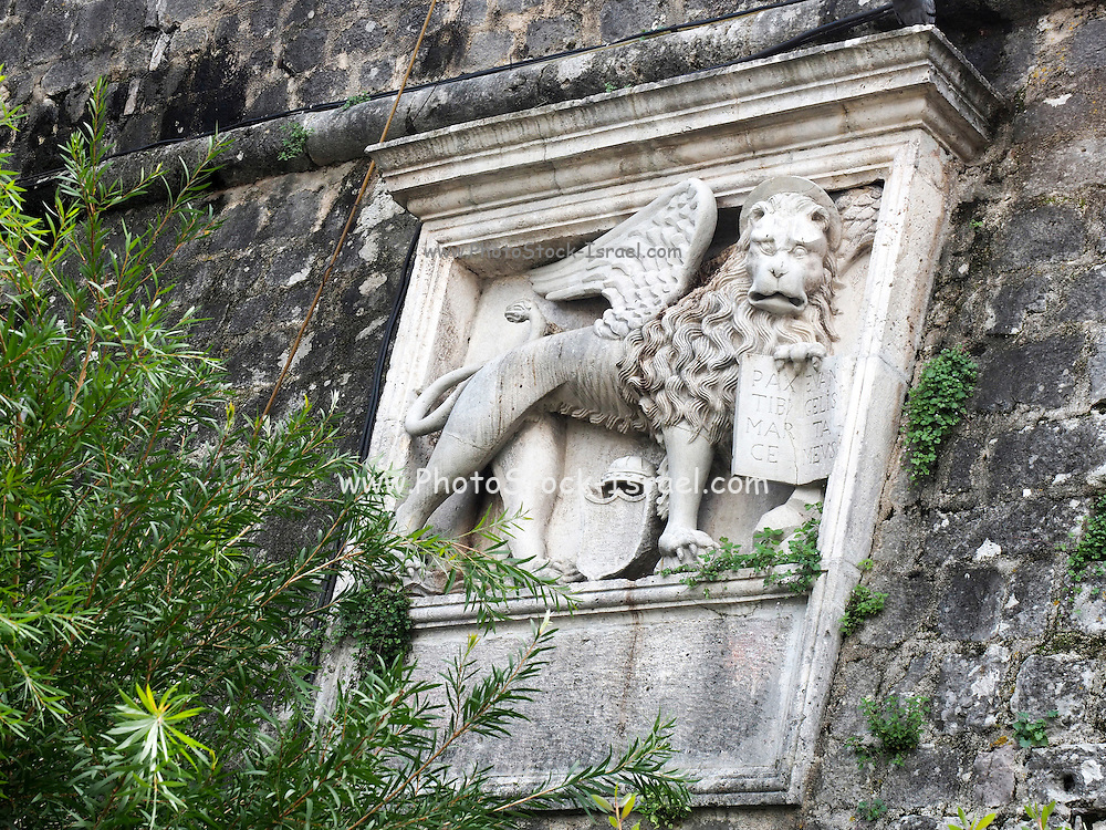 St Mark's Lion on the fortress wall, Kotor, Montenegro historic Town centre