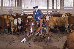April 29 2017 - Minshall Farm Cutting 1, held at Minshall Farms, Hillsburgh Ontario. The event was put on by the Ontario Cutting Horse Association. Riding in the Non-Pro Class is Eric Bouchard on The Reyl Slim Shady owned by the rider.