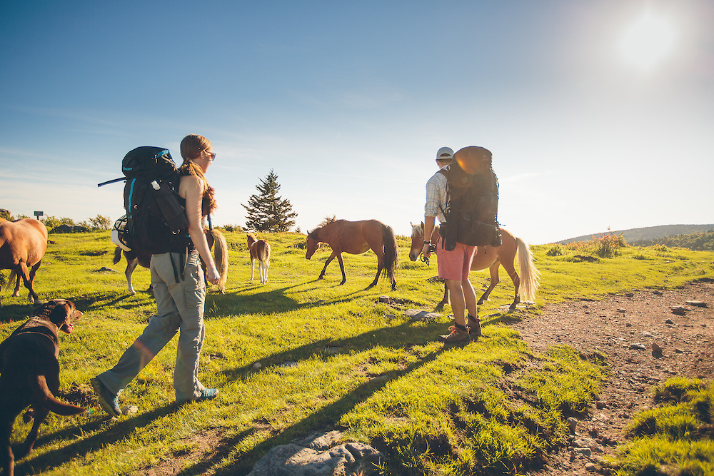 Couple backpacking, hiking and camping in Virginia's grayson highlands and mount rogers.