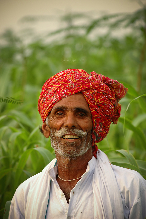 A farmer in his field, Punjab, India
