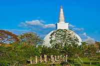 Sri Lanka, province du Centre-Nord, site d'Anuradhapura classé Patrimoine Mondial de l'UNESCO, capitale du Sri Lanka au IIIe siècle avant JC, Dagoba  de Ruvanvelisaya // Sri Lanka, North Central Province, Anuradhapura, historic capital of Sri Lanka, UNESCO World Heritage Site, Ruvanvelisaya dagoba