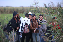 © London News Pictures. Migrants try to cross the border into Hungary from Serbia close to the  border town of Roszke, Hungary, September 8 2015. The UN's humanitarian agencies are on the verge of bankruptcy and unable to meet the basic needs of millions of people because of the size of the refugee crisis in the Middle East, Africa and Europe, senior figures within the UN have told the media.   Picture by Paul Hackett /LNP