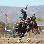 Simon Roughan from Lawrence in action during the Open Saddle Bronc at the Wanaka Rodeo. Wanaka, South Island, New Zealand. 2nd January 2012