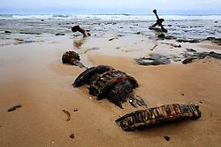 AUSTRALIA VICTORIA GREAT OCEAN ROAD 10FEB08 - Debris from an old shipwreck at wreck beach on the Victoria Coast, famous for its high number of shipwrecks...jre/Photo by Jiri Rezac..© Jiri Rezac 2008..Contact: +44 (0) 7050 110 417.Mobile:  +44 (0) 7801 337 683.Office:  +44 (0) 20 8968 9635..Email:   jiri@jirirezac.com.Web:    www.jirirezac.com..© All images Jiri Rezac 2007 - All rights reserved.