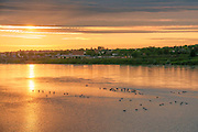 Sunset on the Missouri River from River's Edge Trail, Great Falls, Montana.