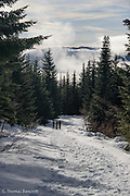 The sun started to poke through the clouds giving bright contrast to the landscape.  Fog continued to flow through the valley below Kendal Peak.  Snowshoers were enjoying the hike up the trail.