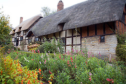 Stratford-Upon-Avon, South Warwickshire:  Anne Hathaway's Cottage is a place of pilgrimage for Shakespeare enthusiasts. ..From stratford.co.uk website: Anne Hathaway's Cottage, made famous on chocolate boxes and tea towels, is arguably the most picturesque of the Birthplace Trust properties. The cottage nests in the idyllic setting of Shottery, which lies a mile west of Stratford. The cottage belonged to the prosperous Hathaway family and was the pre-marital home of William Shakespeare's wife, Anne. Although referred to as a cottage, it is actually a substantial, twelve-roomed, Elizabethan farmhouse. Externally the building with its low thatched roof, timbered walls and lattice windows has changed very little since Anne Hathaway's time. Parts of the building structure date back further than the 15th century, using some of the earliest English house-building techniques. The cottage was built on a slope, and parts of the building consequently sit at different levels. ..Internally the structure of the house has changed a little; the house has now been divided up and would originally have been one. There are many 16th century fireplaces still in place and the remains of the original Great Hall are still clearly visible. The bedroom upstairs contains an Elizabethan wooden bedstead, with a mattress of rush cords threaded onto the wooden frame. It is said that this is the bed that Anne Hathaway was born upon. ..The cottage belonged to the Hathaway family until 1892, when it was bought, along with furnishings, by The Birthplace Trust. The Trust restored it to its original character, removing the Victorian items that the Hathaway family had gathered. The original open hearth fireplace was restored to its former glory. Beside the fireplace is an old wooden settle, upon which it is believed that William Shakespeare courted Anne Hathaway. In 1969 the cottage was severely damaged by fire, but was successfully reclaimed once again by The Birthplace Trust. ..The cottage was known
