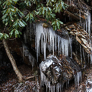 Rain freezes and turns to ice on the side of a hill in Smoky Mountain National Park in Galinburg, Tennessee.  photo by David Peterson