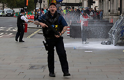© Licensed to London News Pictures. 01/10/2019. London, UK. Police use a fire extinguisher on a man who poured petrol on himself and attempted to set himself on fire at the gates of Parliament in London. Photo credit: George Cracknell Wright/LNP