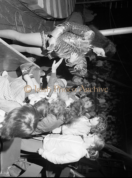 08.09.1984<br /> 09.08.1984.<br /> 8th September 1984<br /> Chipperfield's circus performed before packed houses in Mullingar, Co Westmeath.<br /> Picture shows the excitement, as one of the circus performers introduces a tiger cub to the audience.